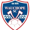 Wau Axemen - H9 Logo