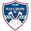 Wau Eucalypts - NJG16 Logo