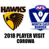 AFL Player Visit 2018 - Hawthorn in Corowa