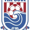 The Cove Blue Logo
