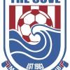 The Cove Blue Logo
