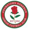 Adamstown 14/01-2018 Logo