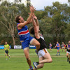 2018 Round 5 - Vs Norwood (Seniors)