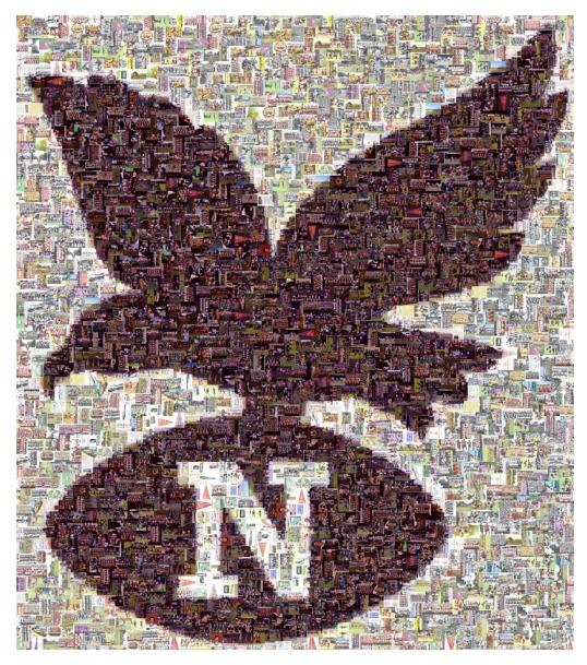 83bcce153d49 CLUB HISTORY 1951 - 2013 - North Beach Sea Eagles - SportsTG