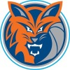 Bobcats U12B Killingsworth Logo