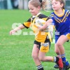 U6 A COOGEE DOLPHINS vs STH SYDNEY MUSTANGS 26 May