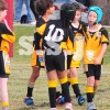 U8-2 B SOUTH SYDNEY MUSTANGS vs BOTANY (Y) 2 June