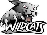 Wynyard Wildcats