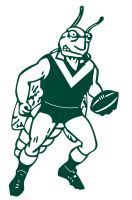Tullibigeal Football & Netball Club