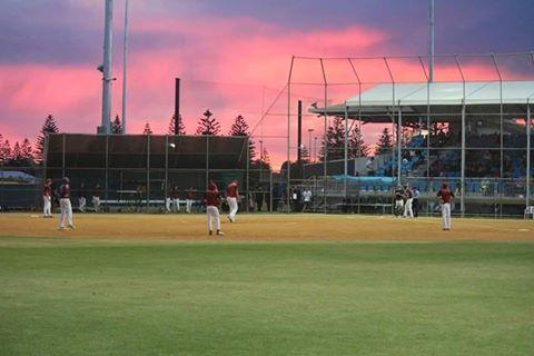 Softball SA - Diamond Sports
