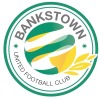 Bankstown United FC Logo