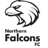 Northern Falcons FC Logo